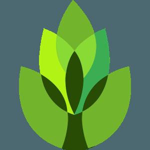 Le migliori applicazioni per riconoscere le piante e i fiori con Android