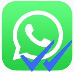 Come non far vedere le spunta blu di Whatsapp quando si legge un messaggio ricevuto